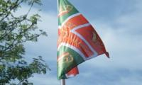 Regiment-of-Lord-Mounrcashal-Flag.jpeg